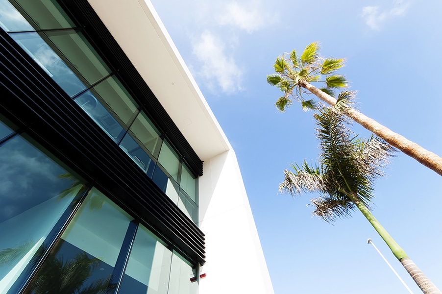 ¿Pueden funcionar las ventanas como paneles solares?